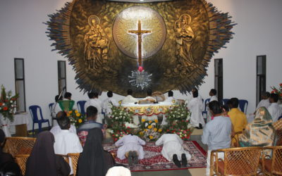 Solemn professions and diaconate ordinations in India