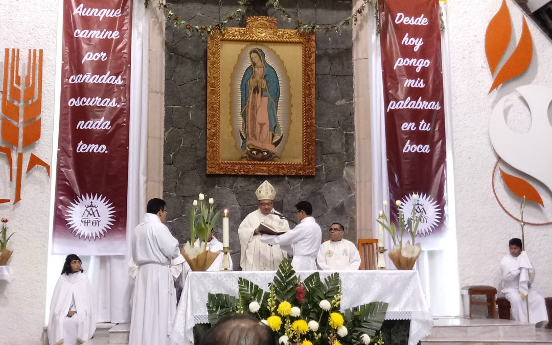 Ordination to the Diaconate in Mexico